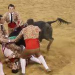 【衝撃映像】闘牛に突進され頭を強打するマタドール、体が痙攣し危険な状態に。。