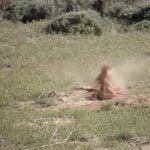 【閲覧注意】ライフルでのハンティング。肉片飛び散るプレーリードッグのグロ動画。