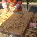 ハチが大量に群がる中で作られる、中国のストリートフードの動画。