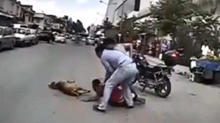 警察官を襲ったピットブル、射殺され飼い主が逮捕される動画。