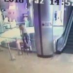 最後のツイートは「offline」。ショッピングモールで自殺した心理学者の女性。