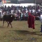 【閲覧注意】闘牛に腕の動脈を切られて血が吹き出てしまった男のグロ動画。