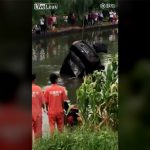 【閲覧注意】川に落ちた車を回収した結果、中からとんでもないものが・・・。