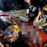 """【閲覧注意】死んだクジラの胃の中から """"40キロものプラスチック"""" が発見されたグロ動画。"""