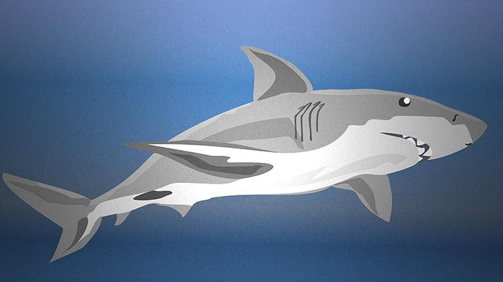 「このサメのお腹、なんか動いてるな・・・」→ 腹を裂いてみた結果・・・。