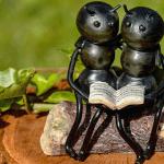 【衝撃映像】アリに巣食われてしまった教会、その数が尋常ではない・・・。