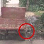 """トラックに """"ゆっくり轢かれる"""" とか想像もしたくない・・・。"""
