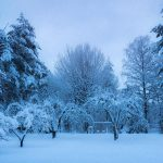 【閲覧注意】氷点下の夜に外で死亡した男性、カチカチに凍る。