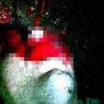 【閲覧注意】銃で撃たれた男性の顔から大量の血が吹き出すグロ動画。
