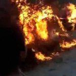 【閲覧注意】レイプ犯の男たちを木に縛って火を放つ → 群衆「イヤッフー!」