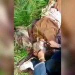 【閲覧注意】ISIS兵士の末路。殺され斬首されるグロ動画。