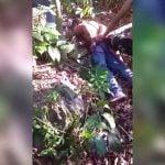 【閲覧注意】森の中でライバルギャングの首を切り落とすグロ動画。