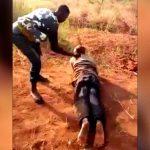 奴隷の男性、ムチで打たれまくる拷問映像。