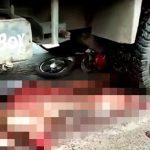 【超!閲覧注意】トラックに轢かれてグチャグチャになったグロ動画2本。