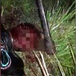 【超!閲覧注意】頭を斧で殴打される男、顔に斧が刺さってしまう・・・。