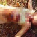 【閲覧注意】レ●プされた後、何度も刺されて殺された女性・・・。