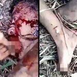 【閲覧注意】切断した自分の耳を食わされ、足の指を切断される男・・・。