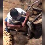 巨大ヘビに餌をあげていた飼育員、指を噛まれて血を流すアクシデント。