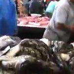 動物がそのままの姿で並ぶアジアの肉市場。