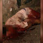 【閲覧注意】ショットガンで顔を撃たれた男、グチャグチャ・・・。