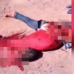 【閲覧注意】トラックに轢かれて内臓が飛び出て死んだ女性のグロ動画。