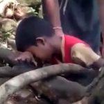 【閲覧注意】果物を収穫中の3人の子供、送電線に触れて感電死してしまう・・・。