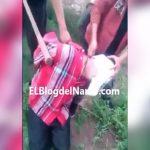 【閲覧注意】メキシコのギャング、生きたまま人間の首を切断するグロ動画・・・。
