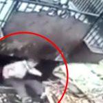 【衝撃映像】ゴミを圧縮する機械に巻き込まれて死んだ作業員・・・。