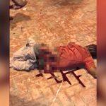 【閲覧注意】腰がねじれて肉が丸見えになって死亡した男のグロ動画・・・。