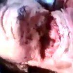 【閲覧注意】首が大きく切り開かれてしまった女性・・・。