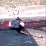 【閲覧注意】事故現場を撮影していたらヤバすぎる人間の死体を撮ってしまったグロ動画・・・。