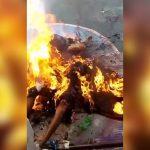 【閲覧注意】ブラジル刑務所内の暴動。斬首され燃やされるグロ動画。