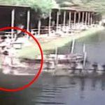 【衝撃映像】エビ養殖場でのアクシデント。曝気タービンに巻き込まれてグルグル回る従業員。