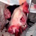 【閲覧注意】頭が割れて死んだ兵士のグロ動画・・・。