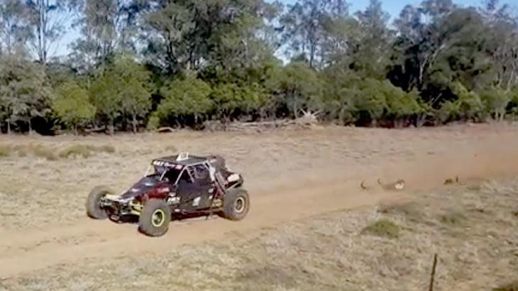 【衝撃映像】高速で走るバギーと衝突したカンガルー、一瞬で粉砕されてしまう・・・。