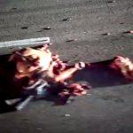 【閲覧注意】文字通りバラバラになった死体が転がる事故現場・・・。