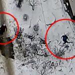 【衝撃映像】7階から飛び降り自殺した男。それに気付かず通り過ぎるお婆ちゃん。