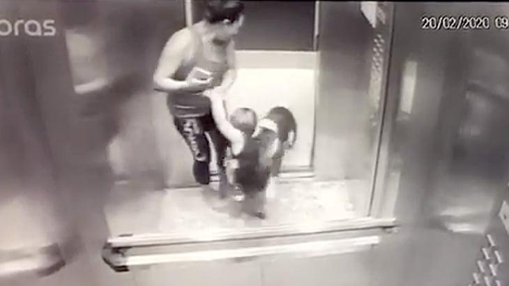 【衝撃映像】ピットブル、まだ幼い男の子に噛み付いてしまう・・・。