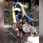 """【閲覧注意】斬首された頭が """"意識を失う瞬間"""" を捉えたグロ動画。"""