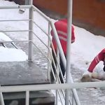 【衝撃映像】7階の窓から2匹のネコと息子を放り投げ、自分も身を投げて自殺した女。