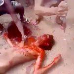 【閲覧注意】ナイフで滅多刺しにされてしまう囚人男性のグロ動画。