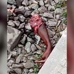 【閲覧注意】列車に轢かれた人間の身体、バラバラになってしまう・・・。