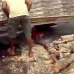【閲覧注意】木材を積んだトラックが横転し男性が潰されてしまったグロ動画。