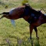馬に足蹴りされた男性の顔、ヤバいことになってしまう・・・。