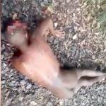 【閲覧注意】全裸の男性死体、背中に無数の銃弾の跡。頭は割れてしまっている・・・。