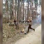 倒木を抱えて木にぶつけて折ろうとした2人の男性、案の定失敗。
