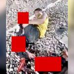 【閲覧注意】列車に轢かれた男性、両脚を失ってしまったグロ動画。