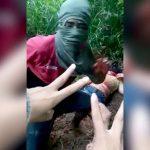 【閲覧注意】森に連れ込まれた女性がマチェーテで首を切断されるグロ動画。