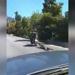 バイクにロープで繋がれ道路を引きずり回される男。