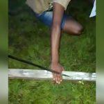 【閲覧注意】泥棒の男、ギャングに捕まり右手の指を切断されてしまうグロ動画。